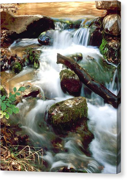 Cascades In Roman Nose State Park Canvas Print