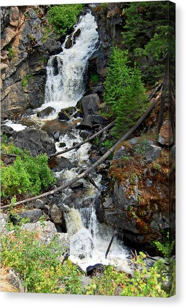 Canvas Print - Cascades Waterfall by Randall Templeton