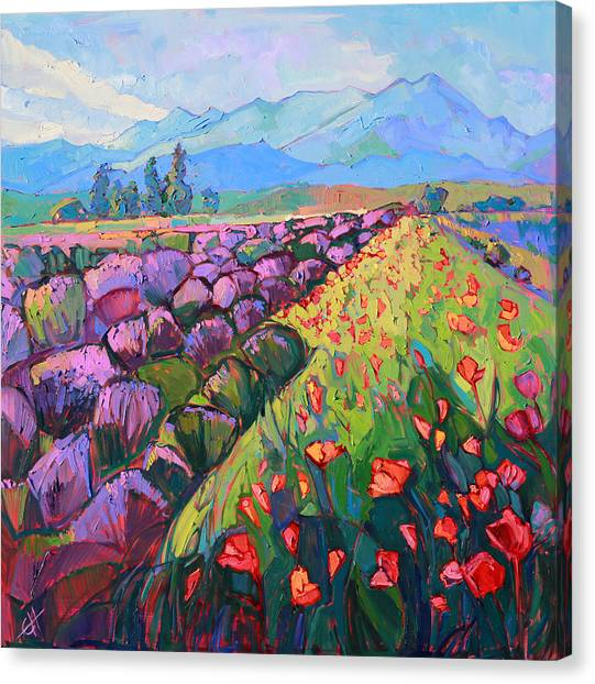 Rolling Hills Canvas Print - Cascading Lavender by Erin Hanson
