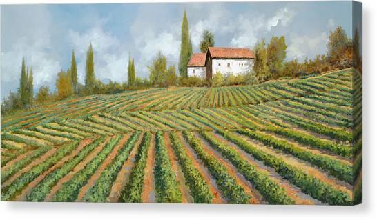 Vineyard Canvas Print - Case Bianche Nella Vigna by Guido Borelli