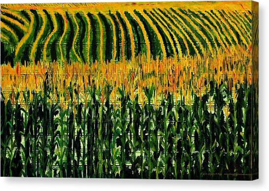 Ohio Valley Canvas Print - Cash Crop Corn by Gregory Allen Page