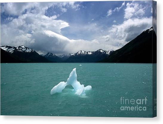 Perito Moreno Glacier Canvas Print - Castaway In Patagonia by James Brunker