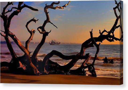 Casting Fate To The Water Canvas Print