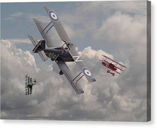 Biplane Canvas Print - Cat Among The Pigeons by Pat Speirs