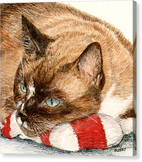 Cat And Toy Canvas Print