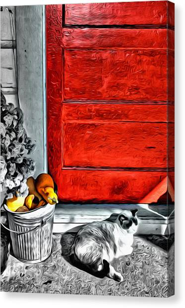 Cat By The Red Door Canvas Print