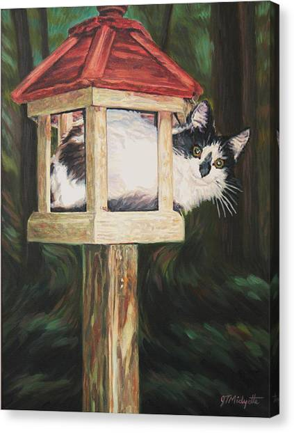 Cat House Canvas Print