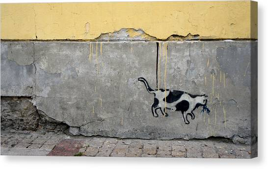 Cat Canvas Print by Kees Colijn