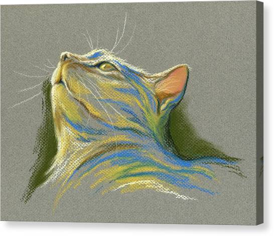 Canvas Print featuring the pastel Cat Looking Up To Heaven by MM Anderson