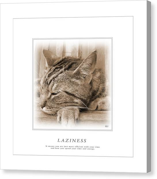 Cat Reflections 2 Canvas Print
