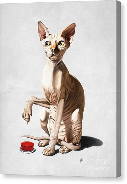 Catastrophe Wordless Canvas Print