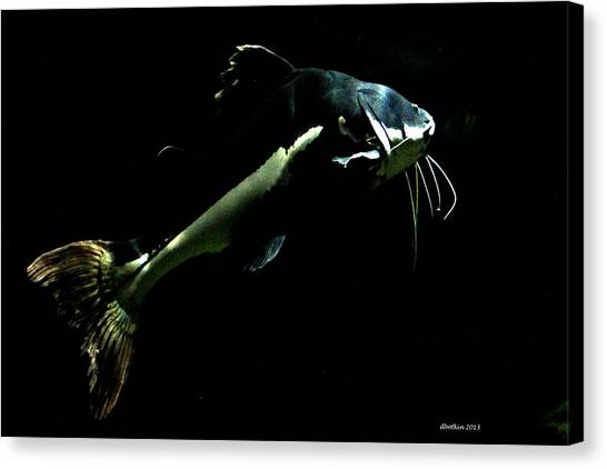 Catfish Are Jumpin Canvas Print by Dick Botkin