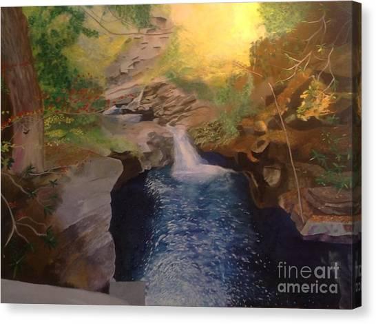 The Dark Gorge Canvas Print