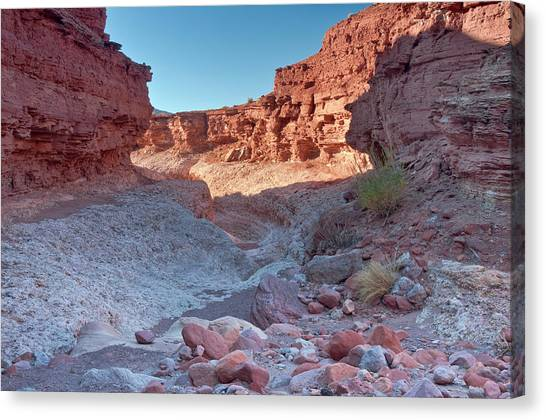 Cathedral Canyon Near Lees Ferry Canvas Print by Witold Skrypczak