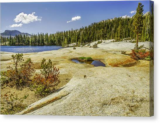 Cathedral Lakes-yosemite Series 18 Canvas Print by David Allen Pierson