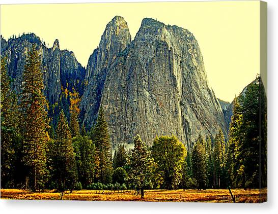 Cathedral Rocks Canvas Print