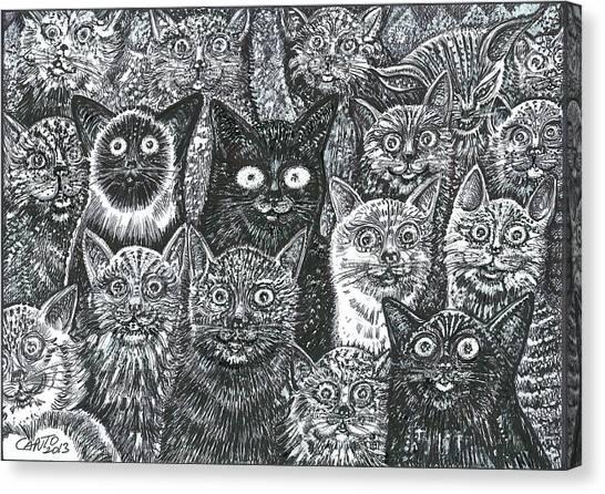 Cats Eyes Canvas Print