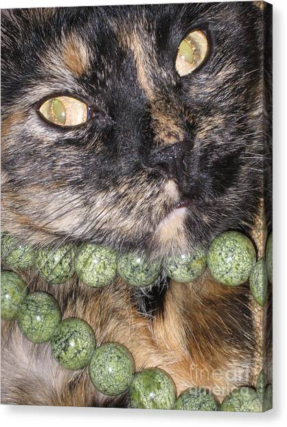 One In A Million... Beauty Of Cat's Eyes. Hello Pearl Collection Canvas Print