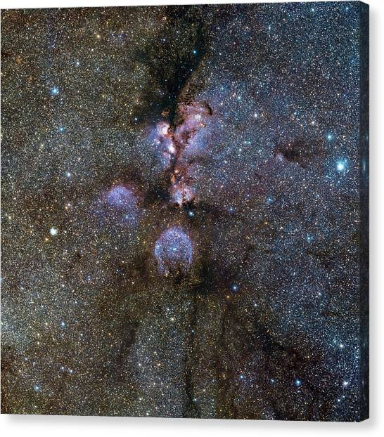 Bear Claws Canvas Print - Cat's Paw Nebula (ngc 6334) by European Southern Observatory/science Photo Library