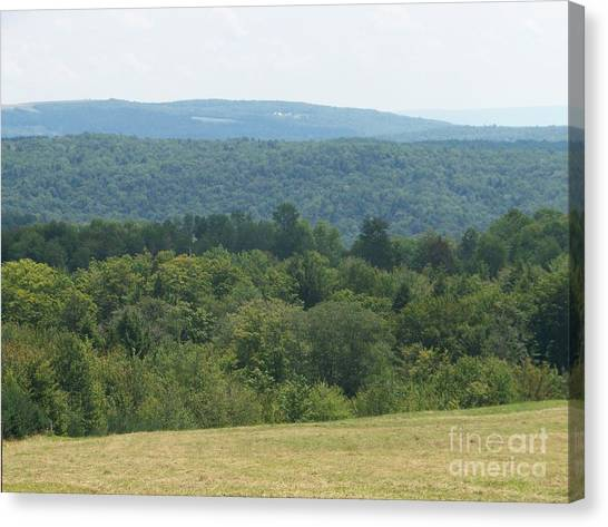 Catskill Rolling Hills Canvas Print by Kevin Croitz