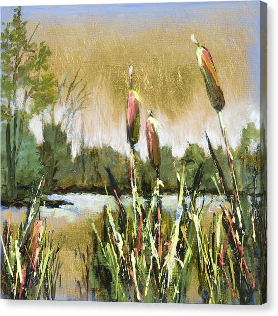 Cattails At Forest Park Canvas Print