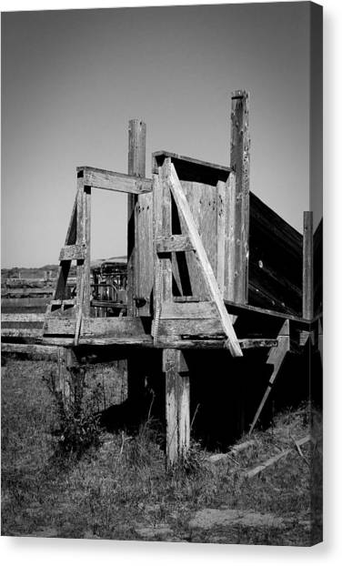 Cattle Chute Canvas Print
