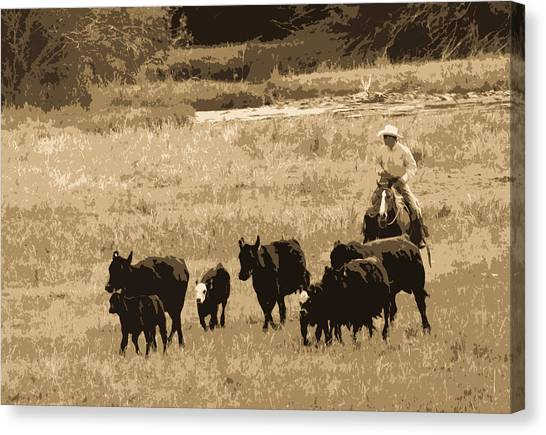 Cattle Round Up Sepia Canvas Print