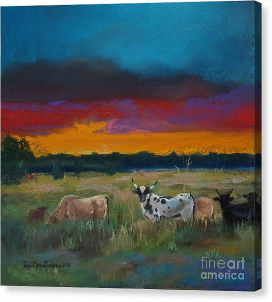 Cattle's Cadence Canvas Print