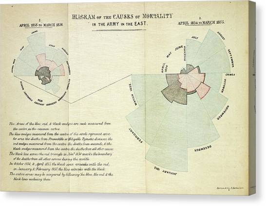 Causes Canvas Print - Causes Of Death In The Crimean War by British Library