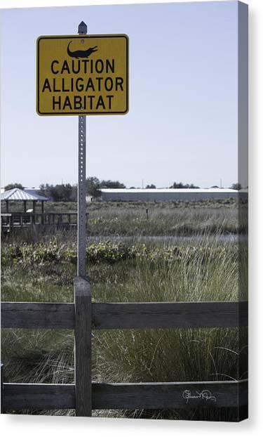 Caution Alligator Habitat Canvas Print