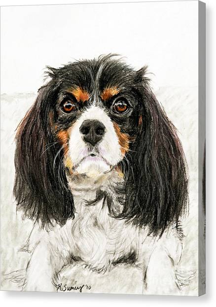 Cavalier King Charles Spaniel Painting Canvas Print