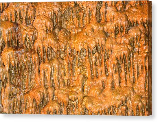 Cave Formation 5 Canvas Print by T C Brown