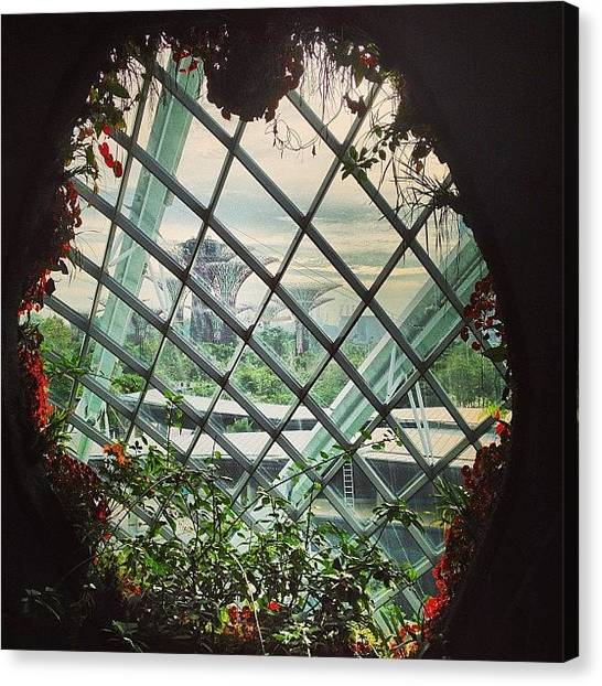 Grove Canvas Print - Cavern Of A Greenhouse by Jeff Leong