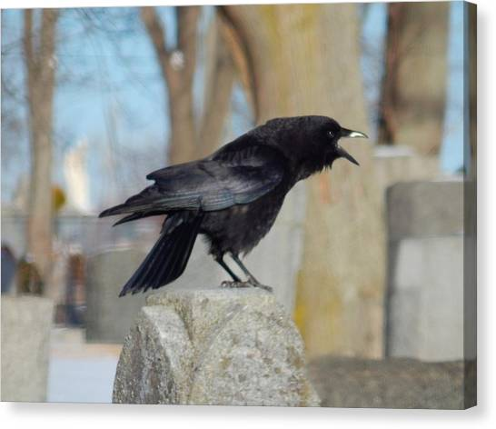 Ravens In Graveyard Canvas Print - Caw Caw Caw by Gothicrow Images