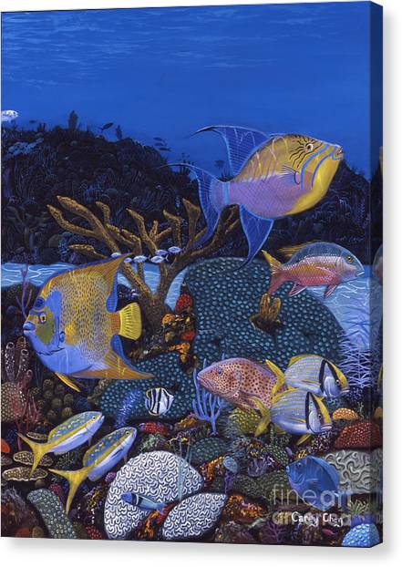Spearfishing Canvas Print - Cayman Reef 1 Re0021 by Carey Chen
