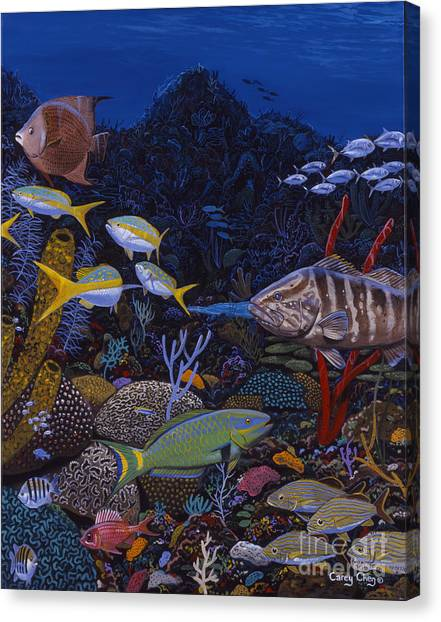 Coral Reefs Canvas Print - Cayman Reef Re0022 by Carey Chen