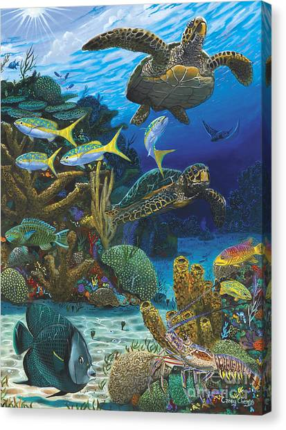 Spearfishing Canvas Print - Cayman Turtles Re0010 by Carey Chen