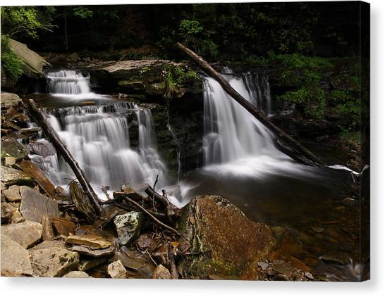 Cayuga Waterfalls Canvas Print by David Simons