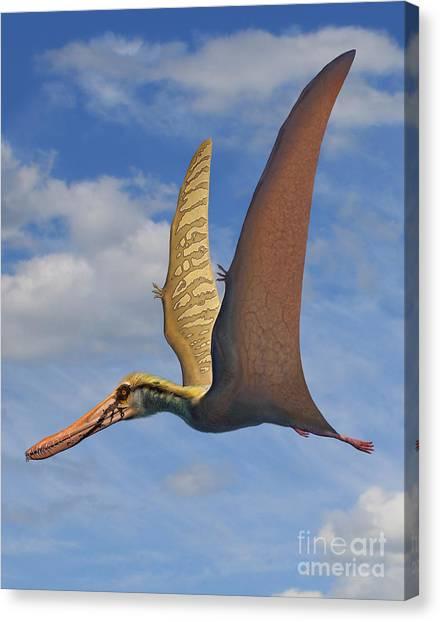 Pterodactyls Canvas Print - Cearadactylus Atrox, A Large Pterosaur by Sergey Krasovskiy
