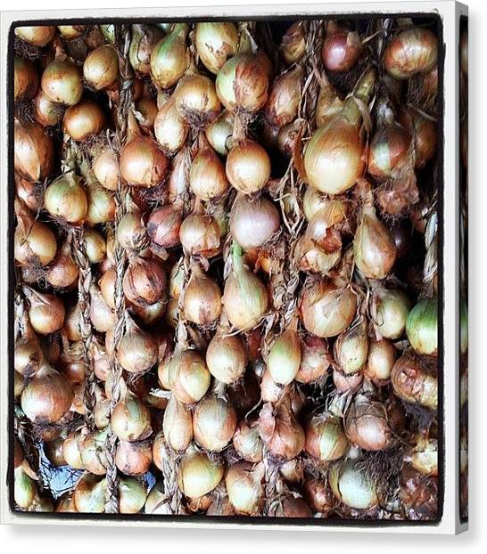 Onions Canvas Print - #cebola #cebolas #onions#penafiel by Nelson Buica