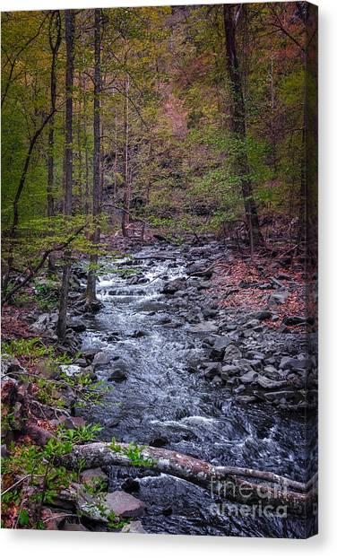 Cedar Falls Creek Canvas Print