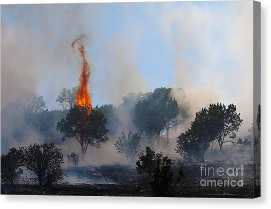 Cedar Fire Canvas Print