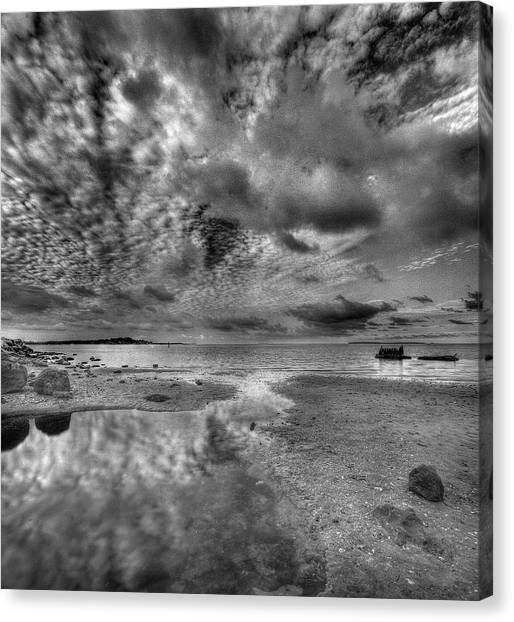 Cedar Tide Canvas Print