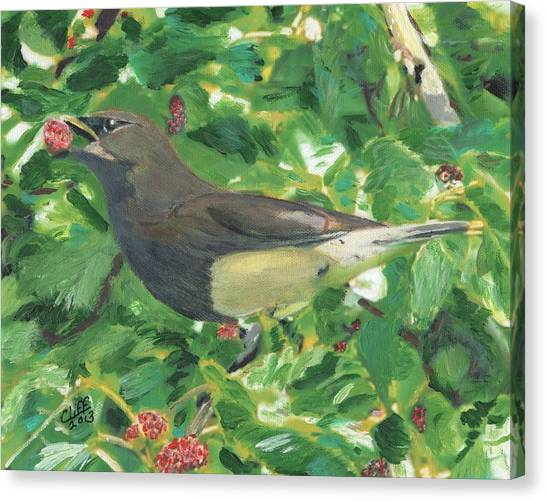 Cedar Waxwing Eating Mulberry Canvas Print