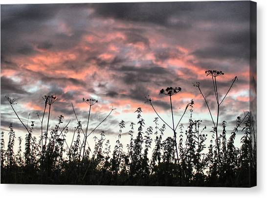 Celebrating Sunset Canvas Print