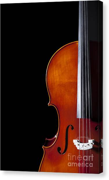 Stringed Instruments Canvas Print - Cello by Diane Diederich