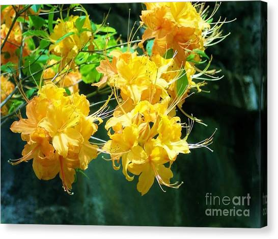 Centered Yellow Floral Canvas Print