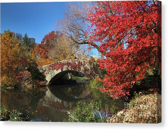 Central Park In The Fall-1 Canvas Print