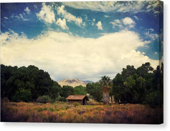 Oasis Canvas Print - Certain Needs by Laurie Search
