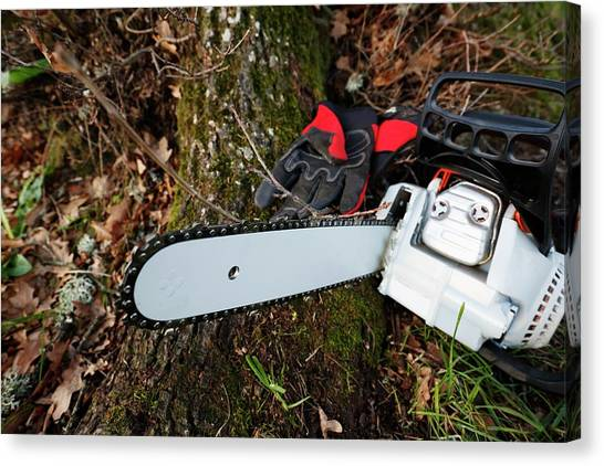 Chainsaw Canvas Print - Chainsaw And Gloves by Christian Lagerek/science Photo Library